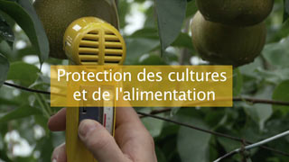 La protection des cultures et de l'alimentation